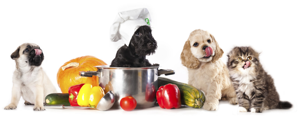 Thanksgiving recipes safe for pets