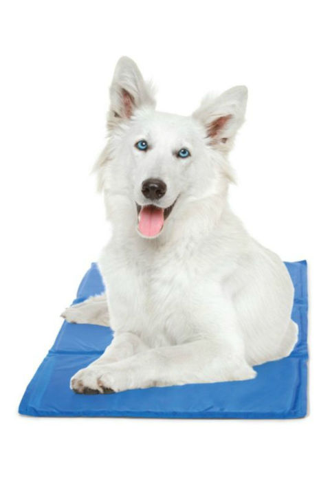 Holiday Gift Guide For Dog Lovers Cooling Mat
